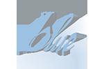 logo-outerbanks